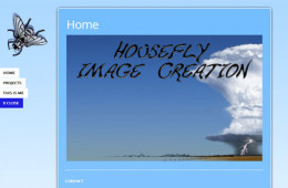 Housefly Image Creation